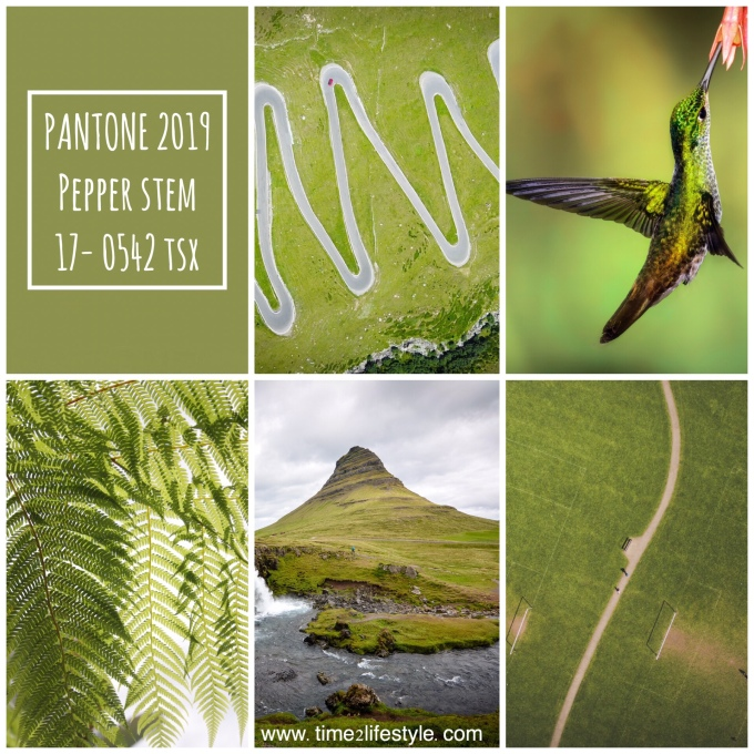 Pantone colors 2019 pepper stem