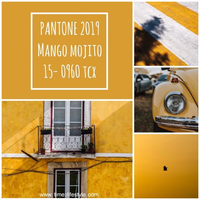 Pantone colors 2019 mango mojito