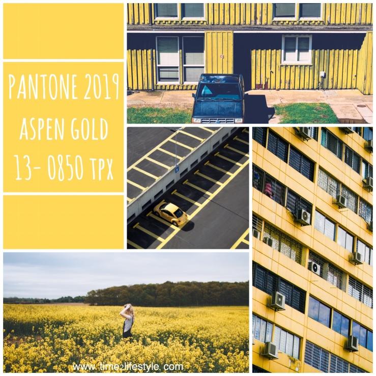 Pantone colors 2019 aspen gold