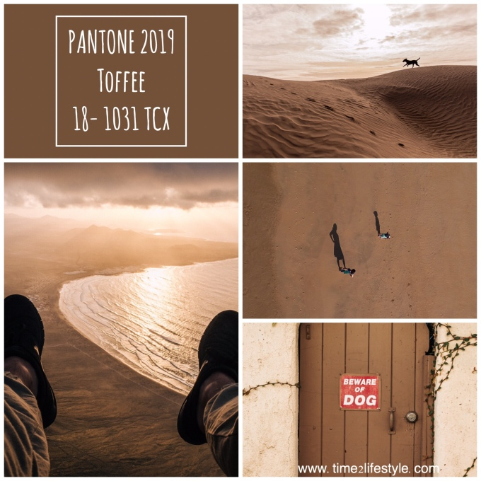 Time2lifestyle Pantone colors 2019 toffee